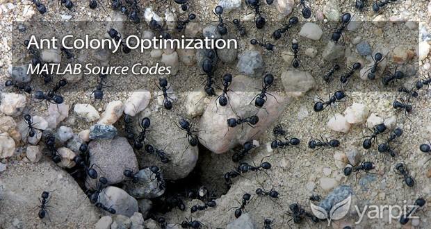Ant Colony Optimization in MATLAB - Yarpiz