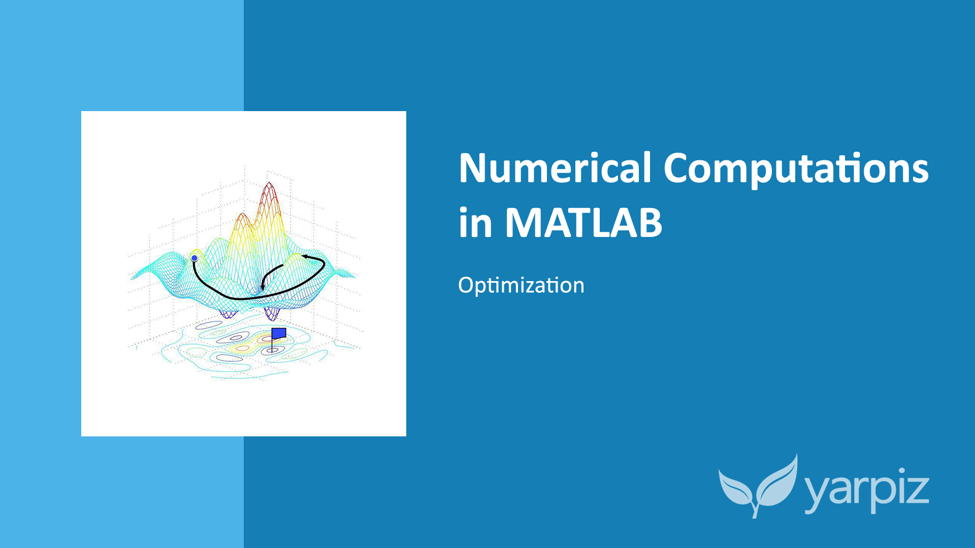 Numerical Computations in MATLAB: Optimization