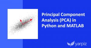 Principal Component Analysis (PCA) in Python and MATLAB — Video Tutorial